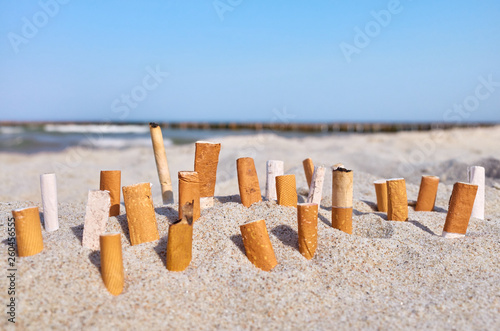 Vászonkép  Close up picture of cigarette butts stuck in sand on a beach, selective focus