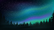Pine Forest, Starry Sky And Northern Lights