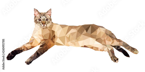 Платно Vector illustration in low polygon style