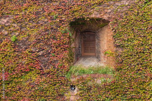 Fotografía A window on the facade of the Montjuic Castle overgrown with ivies in autumn day