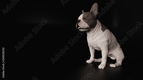 French bulldog looking away while sitting 3d render