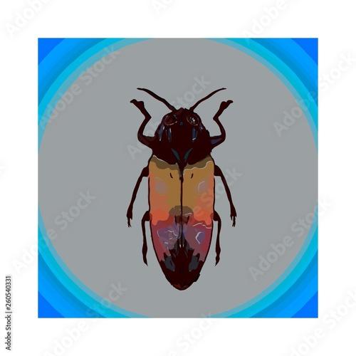 Gold  beetle Fototapete