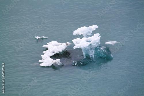 Fotografie, Obraz  Iceberg at the Hubbard Glacier shaped like flowers.