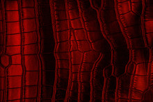 Red Crocodile Leather Texture,...