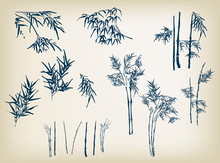 Bamboo Vector Design Elements ...