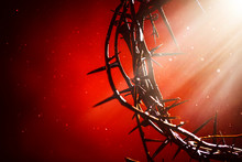 Crown Of Thorns An Emblem Of Christ's Passion