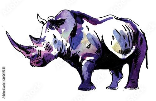 Fotografia Rhinoceros