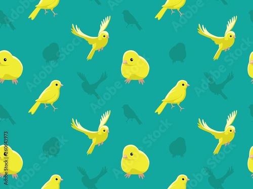Fotografia  Bird Domestic Canary Wallpaper