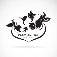 Vector Of Two Cows Head Design. Animals Farm. Cows Icon Or Logo.