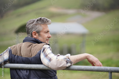 Fotomural  Farmer leaning on fence looking out in field