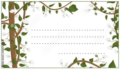 Template for a postcard, a botanical ornament with leaves, white flowers and long stems Wallpaper Mural