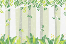 Cute Digital Illustration Of A Miracle Spring Or Summer Forest.