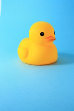 Yellow Rubber Duck Toy Against Blue Background.