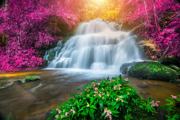 Naklejka Na szybę Amazing in nature, beautiful waterfall at colorful autumn forest in fall season