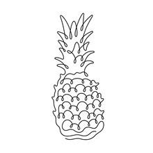 Pineapple Continuous Line Vect...