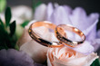canvas print picture - wedding rings