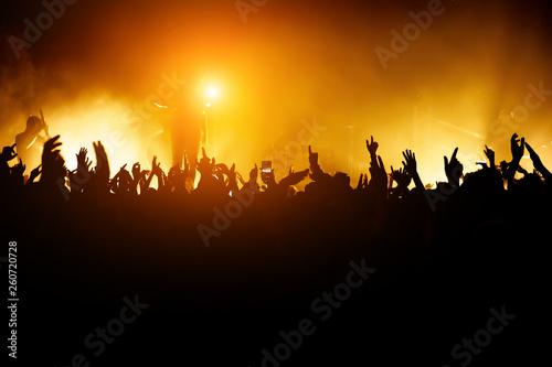 Rock concert Canvas-taulu