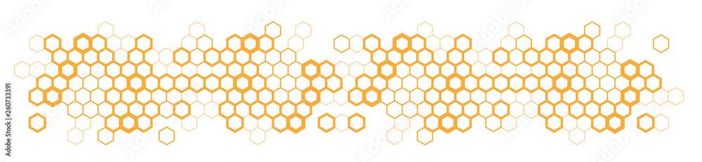 Fototapety, obrazy: Hexagons / honeycomb