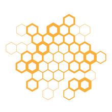 Hexagon / Honeycombs