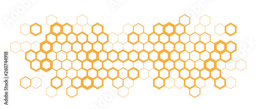 Tablou Canvas Hexagon / Honeycombs