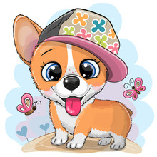 Cartoon Dog Corgi In A Cap