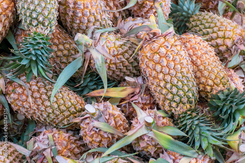 Fresh pineapples stacked for sell in the fruit market
