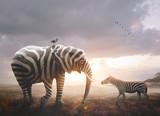 Fototapeta Zebra - Elephant with zebra stripes
