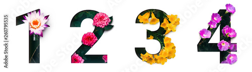 Foto Flower font number 1, 2, 3, 4 Create with real alive flowers and Precious paper cut shape of Number