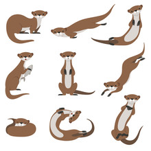Cute Otter Set, Funny Animal C...