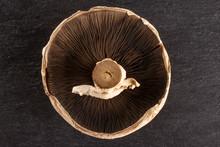One Whole Fresh Brown Mushroom...