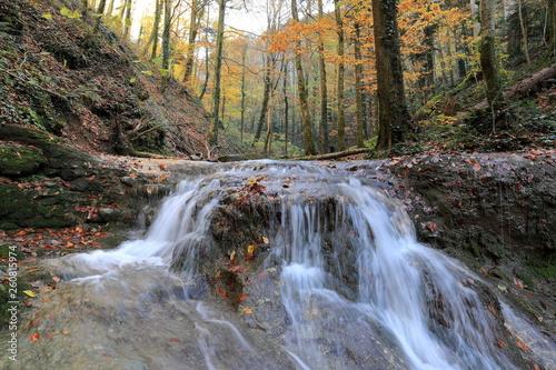 Malownicze krajobrazy jesień z drzew na tle wody, rzeki i wodospady.
