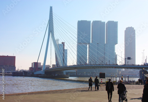 Foto auf AluDibond Schwan The famous Erasmus Bridge amidst the mist on a late autumn day in Rotterdam, Holland, the Netherlands