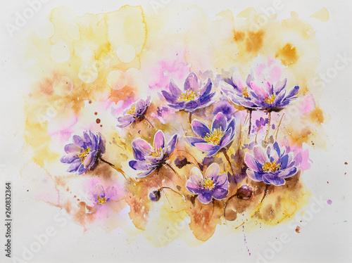 Pennywort blossom watercolo...