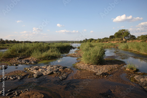 Foto auf Leinwand Elefant Olifants River / Olifants River /