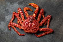 Red King Crab On Gray Backgrou...