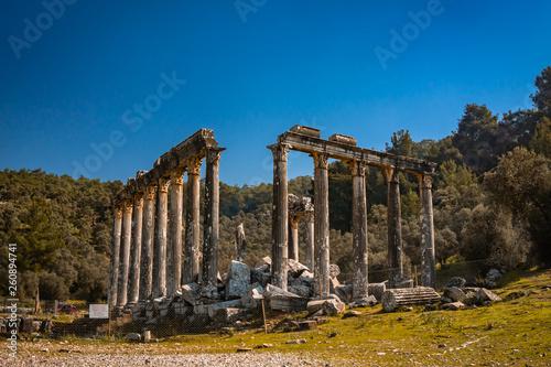Fotografia  Temple of Zeus Lepsinos