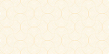 Pattern Geometric Line Circle Abstract Seamless Orange Line On White Background. Summer Vector Design.