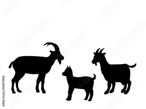 Goat goatling farm mammal black silhouette animal Fototapete