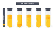 Growth Of Bacterial Colonies In Test Tubes Depending On The Amount Of Oxygen. Flat Vector Illustration.