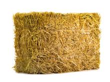 Yellow Dry Barley Straw