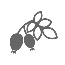Rosehip Branch With Red Berries Outline Icon