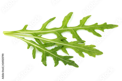 Fresh arugula herb leaves isolated. Canvas Print
