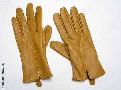 brown glaves isolated in white background, fashion gloves,leather Fototapet