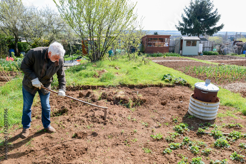 Man preparing ground to grow own vegetables in an allotment garden Canvas Print