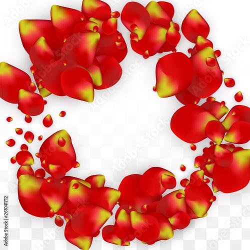 Vector Realistic Red Rose Petals Falling on Transparent Background.  Romantic Flowers Illustration. Flying Petals. Sakura Spa Design. Blossom Confetti. Design Elements for Wedding Decoration.