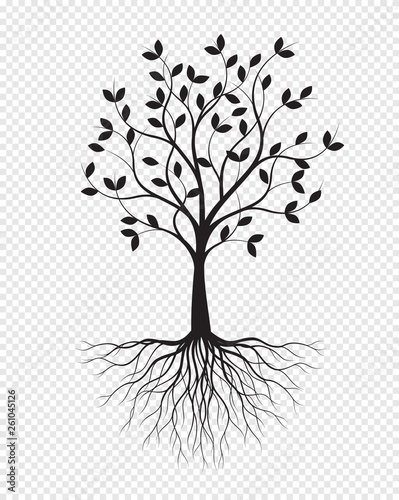 Black Tree With Roots On Transparent Background Vector Illustration