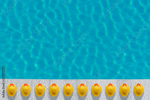 Yellow rubber ducks near to the pool. Summer minimal concept. Fototapeta