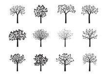 Set Of Black Vector Trees. Vector Illustration.