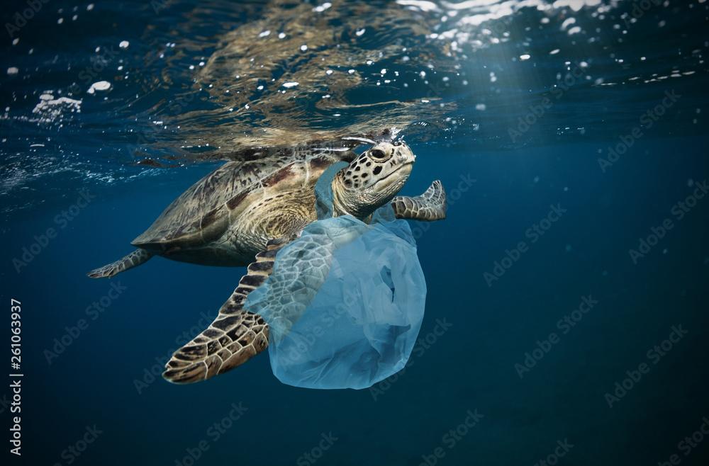 Fototapeta Underwater global problem with plastic rubbish