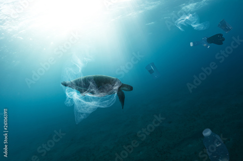 Fotomural  Underwater global problem with plastic rubbish